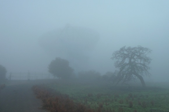 Big Dish in the fog