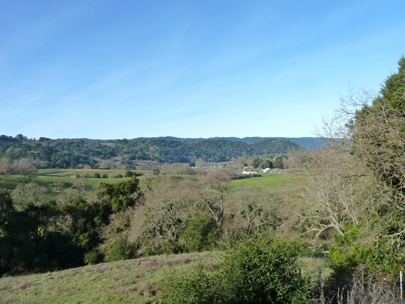View looking west from Ladera in Menlo Park