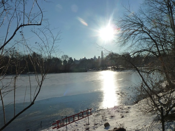 Lake in Central Park Jan 2011