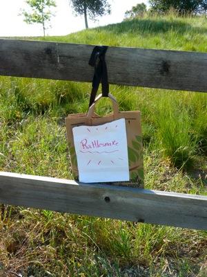 rattlesnake warning along Stanford bike path