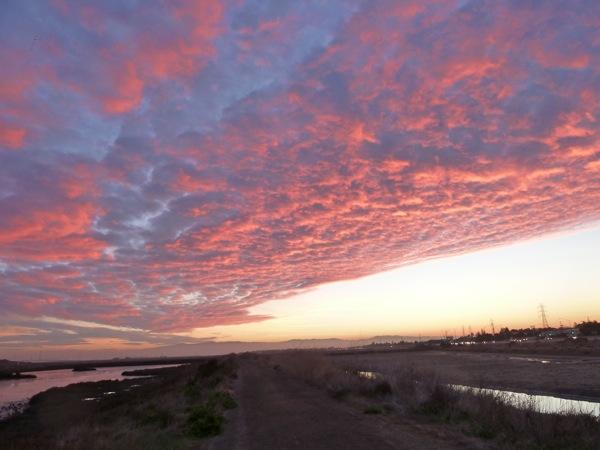 dawn at Bedwell Bayfront Park