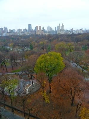 Central Park December 2011